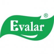 evalar-banner-1