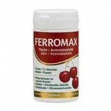 FERROMAX, 120 TABLEČIŲ ( HANKINTATUKKU )