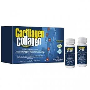 Maisto papildas Cartilagen Collagen, vaisių skonio, skystis 10x50ml