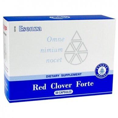 Red Clover Forte N60 Santegra maisto papildas